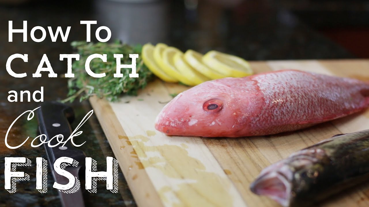 How to catch clean and cook a fish youtube for Catch and cook fish