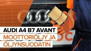 Kuinka vaihtaa Öljynsuodatin AUDI A4 Avant (8ED, B7) - ilmaiseksi video verkossa