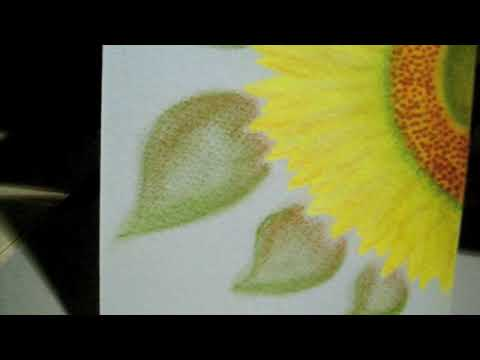 how to watercolor and pastel pencils youtube