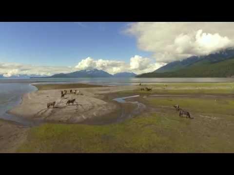Juneau Alaska - 4K