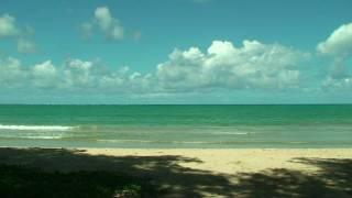 Kahana Bay Short