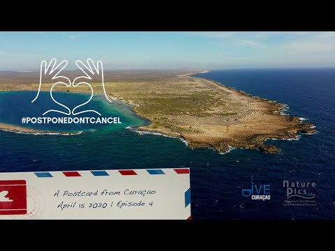 a-postcard-from-curaçao-|-april-15,-2020---episode-4-|-eastpoint-curacao