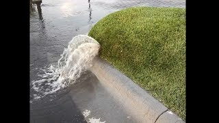 riesige gras blase platzt, gefährliche flüssigkeit?