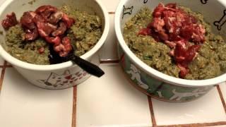 Honest Kitchen Dehydrated Dog Food