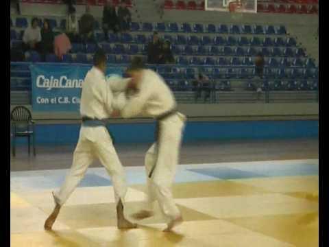 The Best of Fight Las Palmas Absoluto 2008