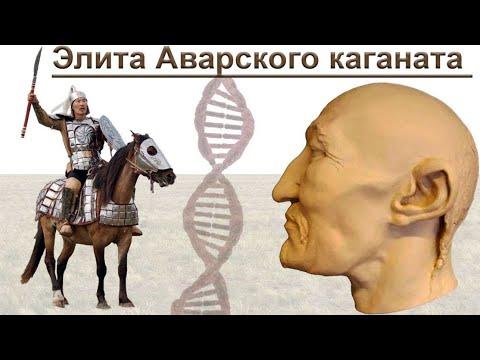 Авары — происхождение и социальная организация элиты Аварского каганата в VII веке н.э.