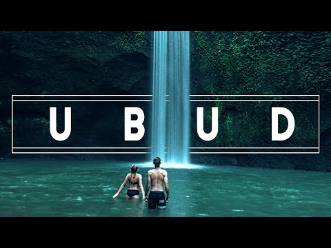 What To Do In UBUD - BALI Travel Guide!