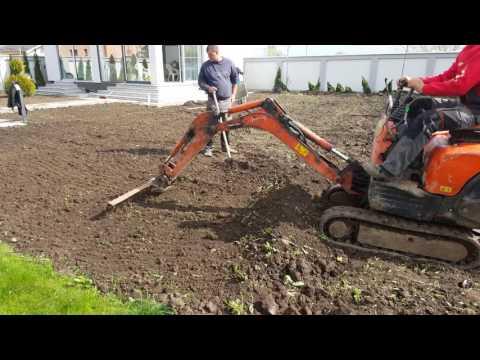 Cherry's garden la o gazonare cu seminte in Bragadiru Ilfov.