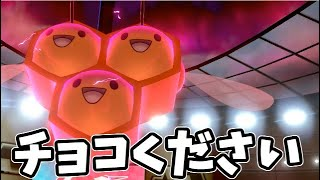 【ポケモン剣盾】バレンタイン企画!ポケモン軍団にチョコをください!