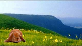兎のダンス♪ (懐かしの童謡・唱歌) Japanese Nursery rhyme
