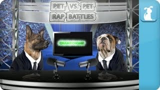 Pet vs. Pet Rap Battle Tournament Championship Results Show