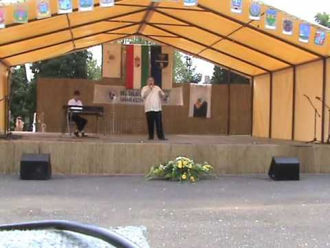 Tobcsi Tóber László ének Zalakomár Mezővárosi Találkozó 20090809 kiralyportal hu