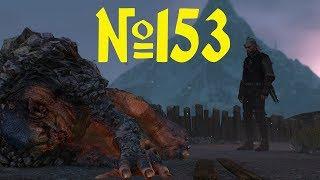 Ведьмак 3 Прохождение Часть 153 Мастер Арены