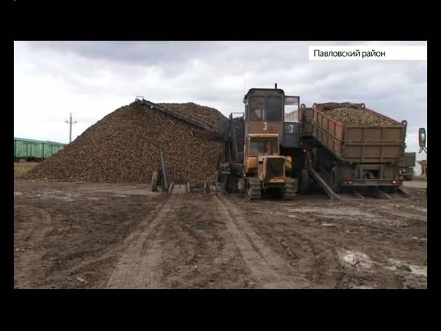 Черемновский сахарный завод