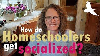 How Do Homeschoolers Get Socialized?