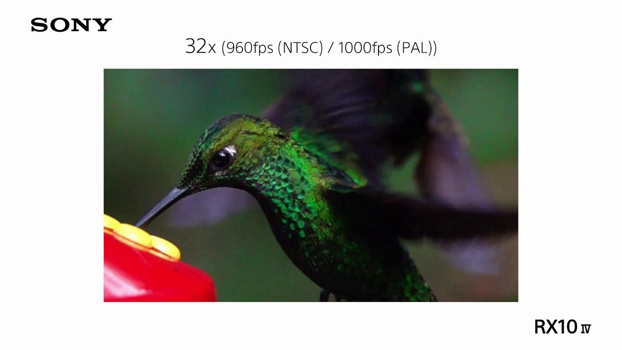 Sony RX10IV|飛羽攝影|超級慢動作錄影 - YouTube