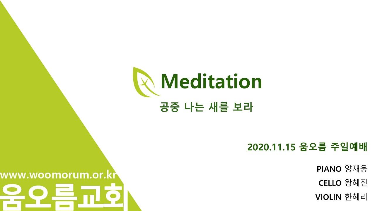 2020.11.15 MEDITATION_공중 나는 새를 보라