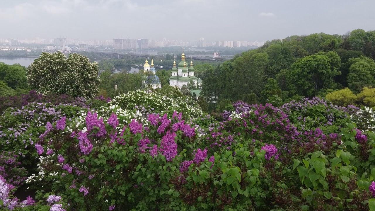 Національний ботанічний сад імені М. М. Гришка НАН України