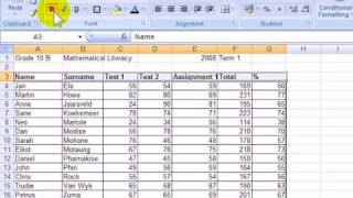 M17(11) How to create a goodlooking spreadsheet in Excel 2007