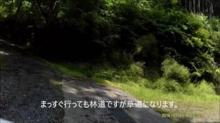 岐阜県本巣市 小津~岐礼線からのりこし峠へ のんびりツーリング