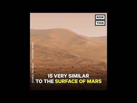 NASA Sending Bacteria Balloons Into Space
