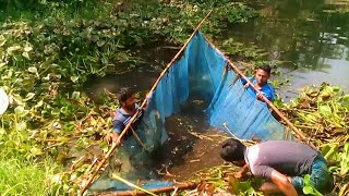 Fishing technique by stealing from a small pond in the village | Fishing Tactics With Large Nets