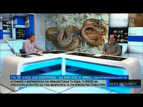 Φίδια με τον Γιώργο Κωνσταντίνου - Μέρα Μεσημέρι - ΔΕΛΤΙΟ ΕΙΔΗΣΕΩΝ / ANT1 NEWS 4/5/2017