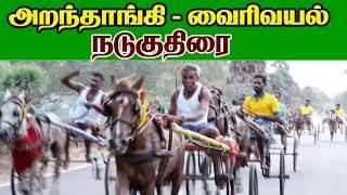 நடு குதிரை வைரிவயல் 24-04-2019  nadu kuthirai vairivayal rekla race