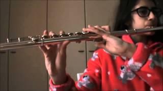 Animals, Martin Garrix | Flauto traverso Video