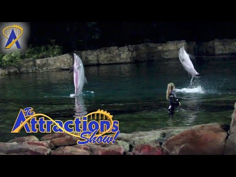 The Attractions Show! - Discovery Cove; Peanuts Celebration; Super Bowl parade; latest news