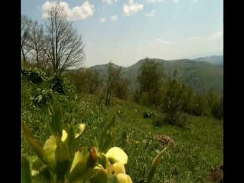 """Fshati Marec , Gollak """"Maj 2012"""""""