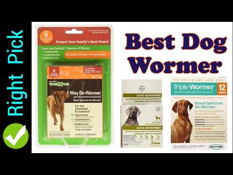 wormer-:-best-dog-wormer