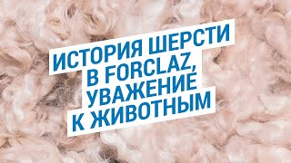 История шерсти в Forclaz, уважение к животным | Декатлон