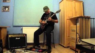 blues guitar-cort M600 part2