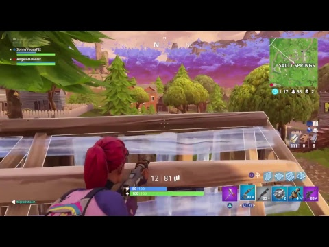 Fortnight with Angelo