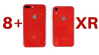 iPhone 8 Plus vs iPhone XR Speed Test!