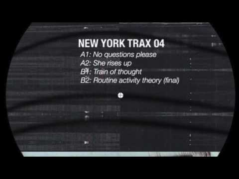 Steve Stoll - Routine Activity Theory (final) [New York Trax 04]