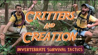 Critters & Creation 4 (Survival Tactics)