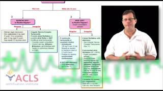 acls video review   tachycardia overview