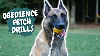 Obedience & Fetch Drills Unleashed Potential Style With Duke Ferguson And Nitro