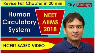 Circulatory System Revision ( CRASH COURSE ) For NEET / AIIMS - 2018 ; NCERT BASED