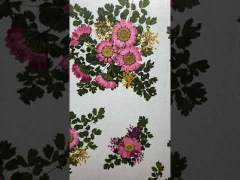 Pressed Petals Designer Series Paper! Watch to the end and see the project I made!