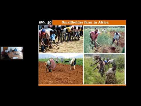 SIL Webinar: Improving Mechanization for African Smallholder Farmers
