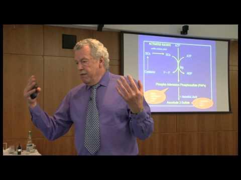 Section 5 - Phase 2 Detoxification Pathways