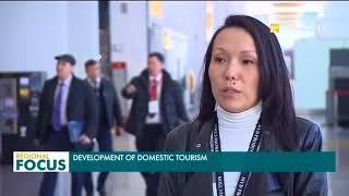 Development of domestic tourism