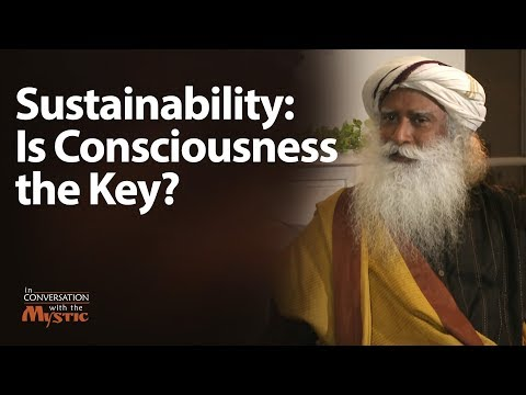 Consciousness is the Key to Sustainability