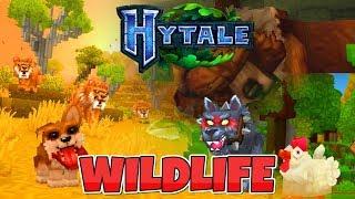 🏞 Hytale 🐶 Zwierzęta 🐯 HD | PL