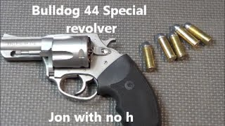 Got a new dog,  a Bulldog 44 special snubbie revolver that is