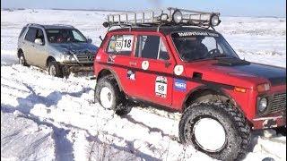 По снежному полю  - Toyota Land Cruiser 80, Mercedes-Benz ML, Нивы, Шеви Нивы, УАЗы и Great Wall