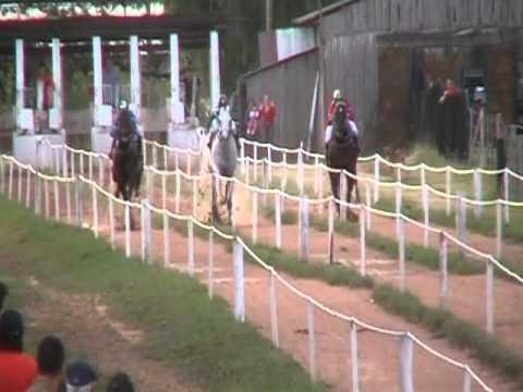 Jogo de carreira de cavalo